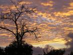 Sunset--0.jpg