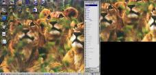 19990226-desktopcubs.jpg