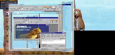 19990227-Leopardtree4.jpg