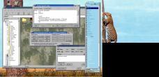 19990228-Leopardtree10.jpg