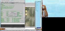 19990228-Leopardtree5.jpg