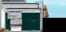 19990228-Leopardtree6.jpg