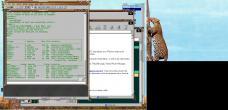 19990228-Leopardtree7.jpg