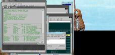 19990228-Leopardtree8.jpg