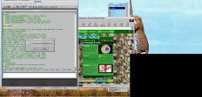 19990228-Leopardtree9.jpg