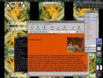 19990415-LinuxScreen.jpg
