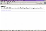 20040421-Mozilla.png