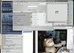 20041017-LionPlush.png